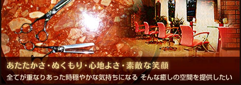 cropped-top_image2.jpg